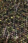 Perline di Giada d'Australia da 8mm su filo da 40cm