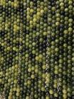 Jade Nephrite perles 8mm sur fil 40cm