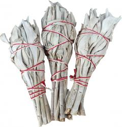 Natural white sage Tulip 20g