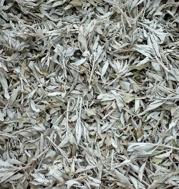 White californian sage 1KG
